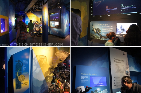 theexhibitdesigner-SF-academy-sciences_aquarium-twilight-zone