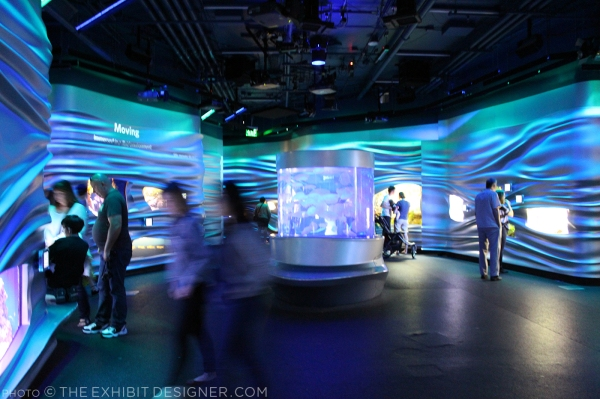 theexhibitdesigner-SF-academy-sciences_aquarium-water-planet.jpg