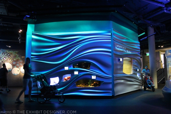 theexhibitdesigner-SF-academy-sciences_aquarium-water-planet3