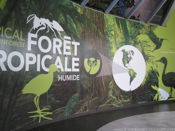 theexhibitdesigner_biodome-tropical-rainforest.jpg